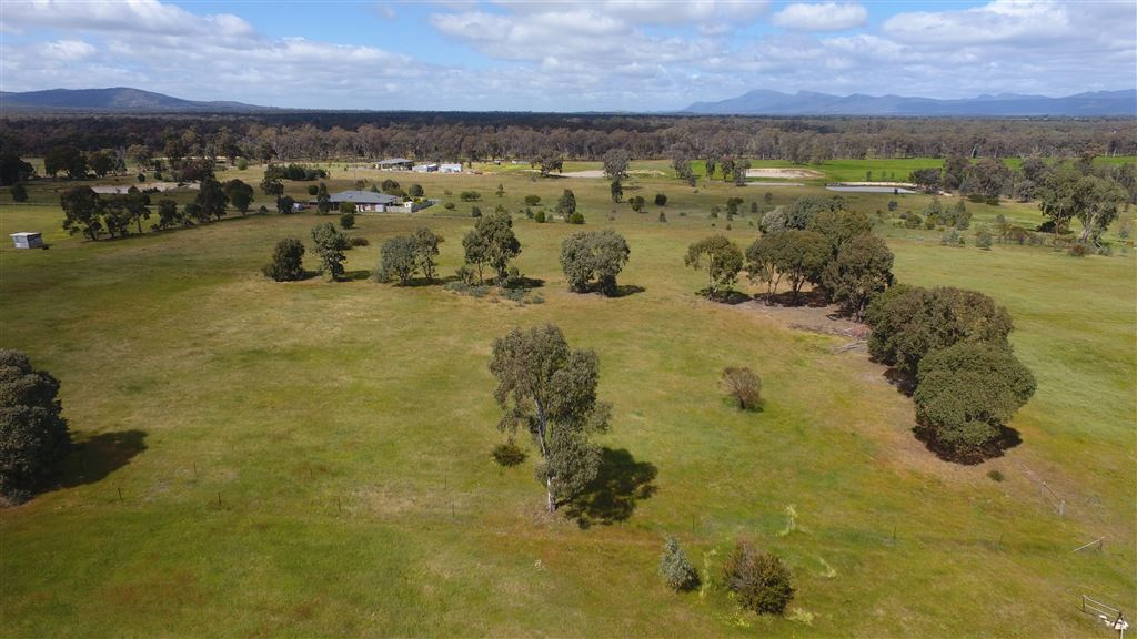 Aerial view with trees