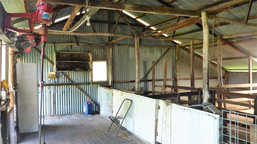 shearing shed inside