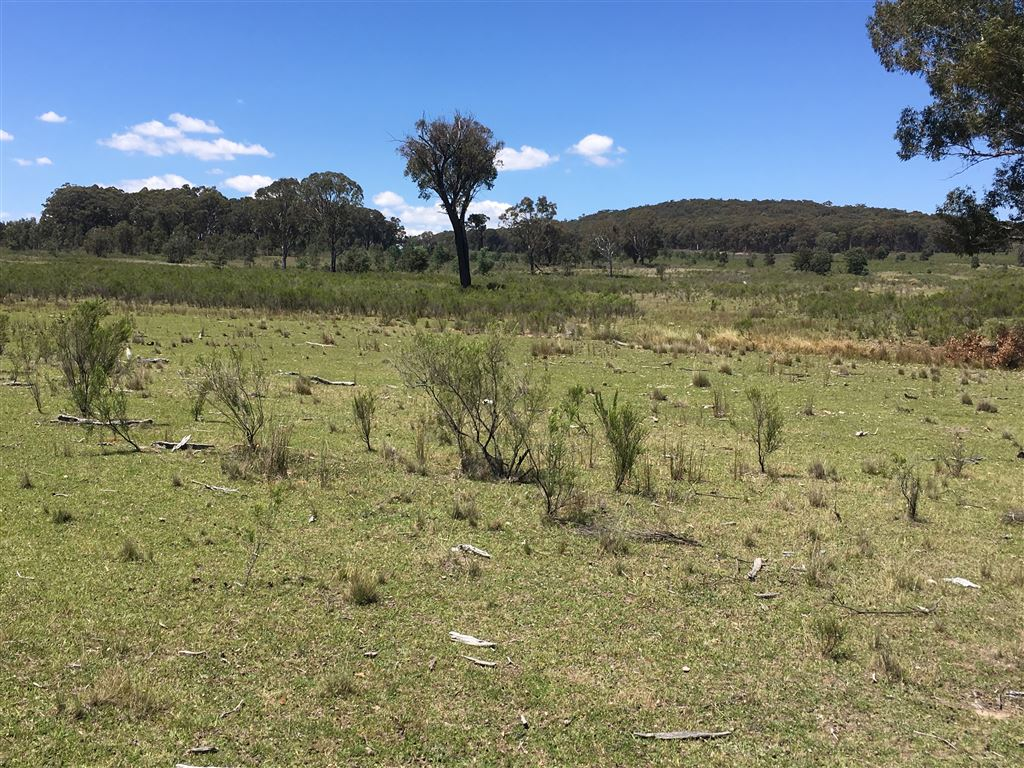 Good areas of open grazing country also suitable for recreational uses.