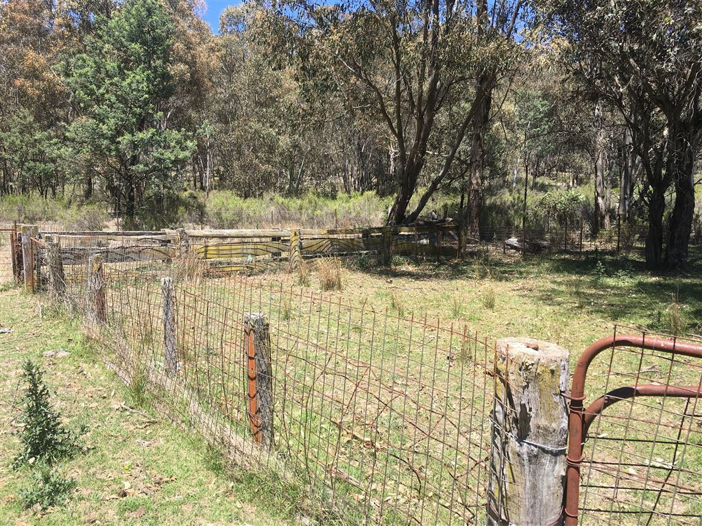 A basic set of sheep yards remains at the rear of the property.