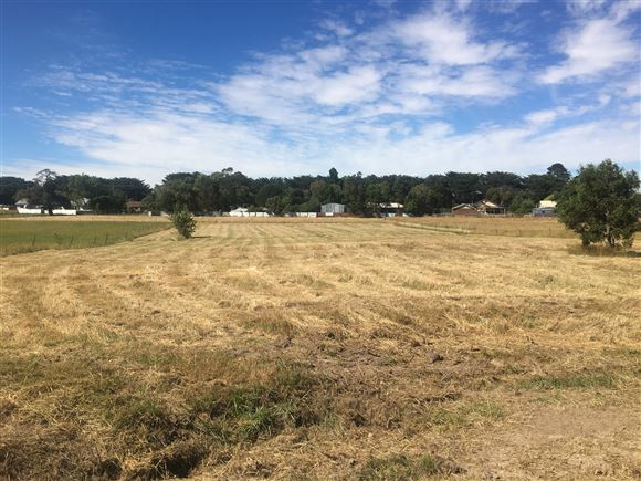 Secure Your Own Lifestyle Block - Approximately 1 Acre