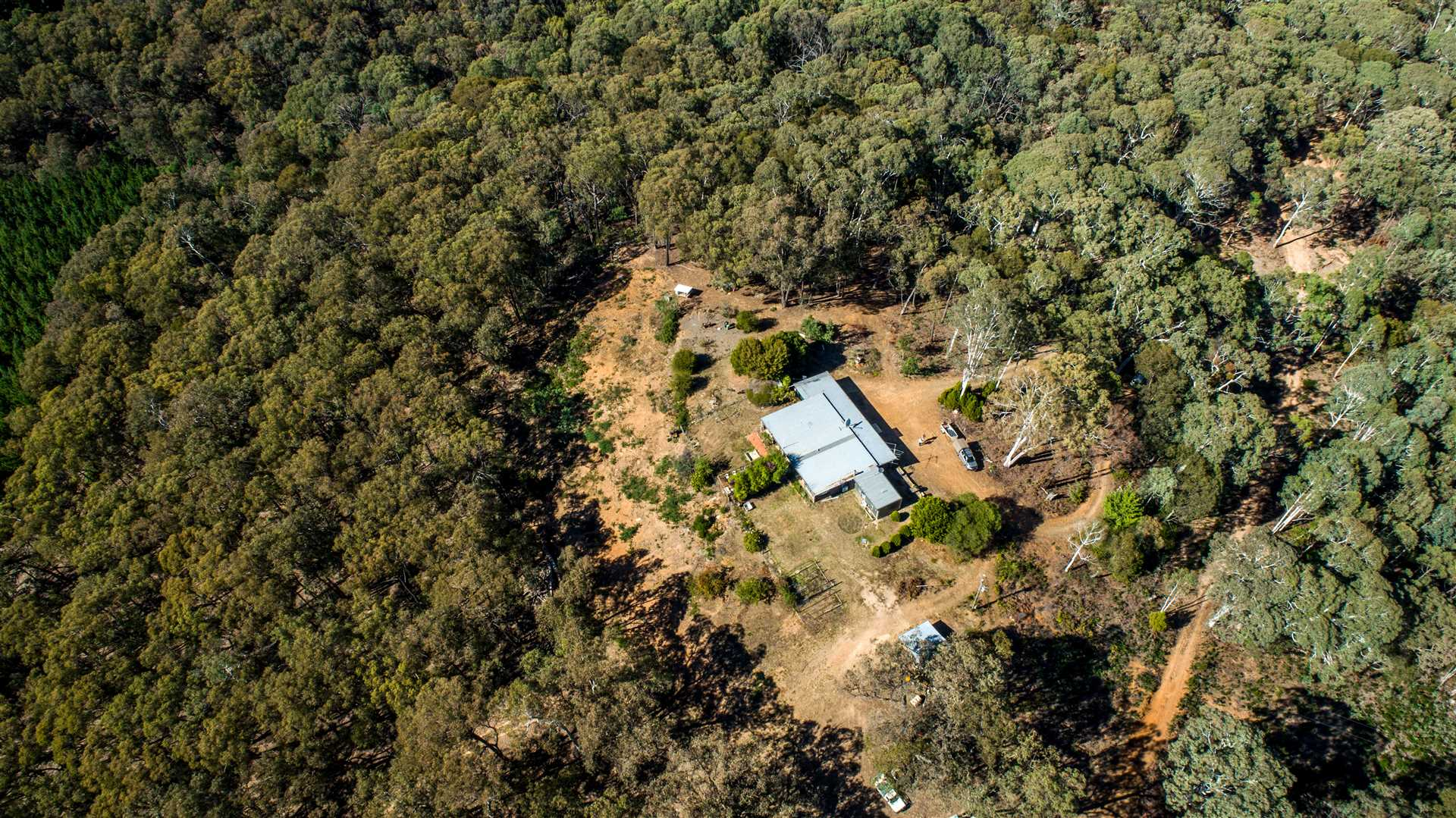 Recreational lifestyle bush block with 4 bedroom home