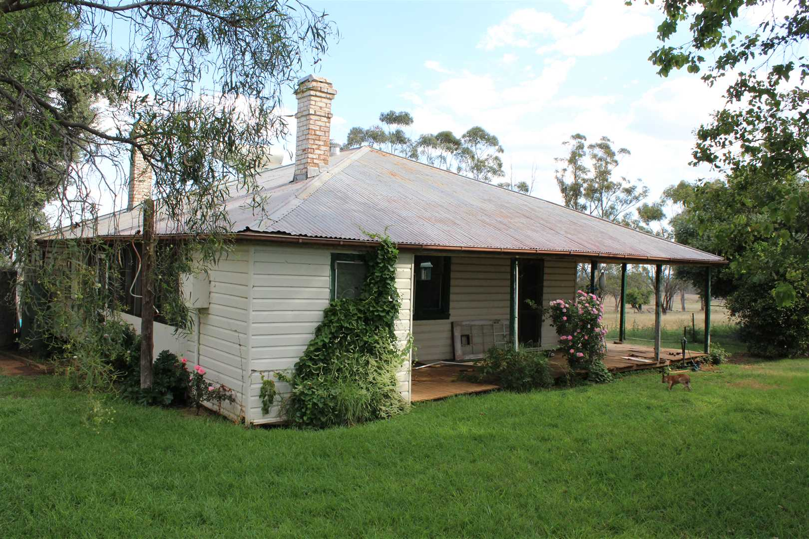 2 br plus office weatherboard home