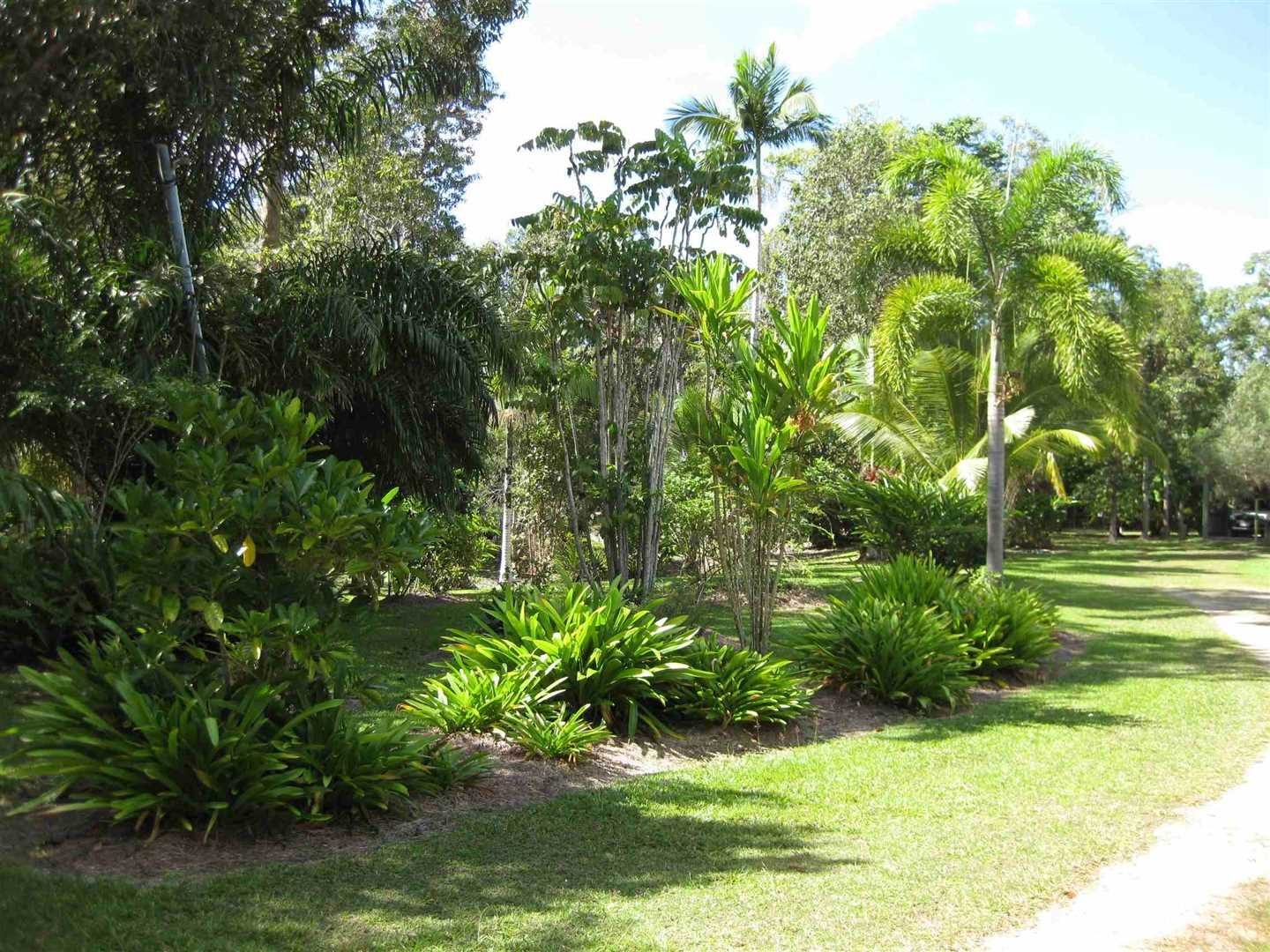 View of part of garden area, photo 2
