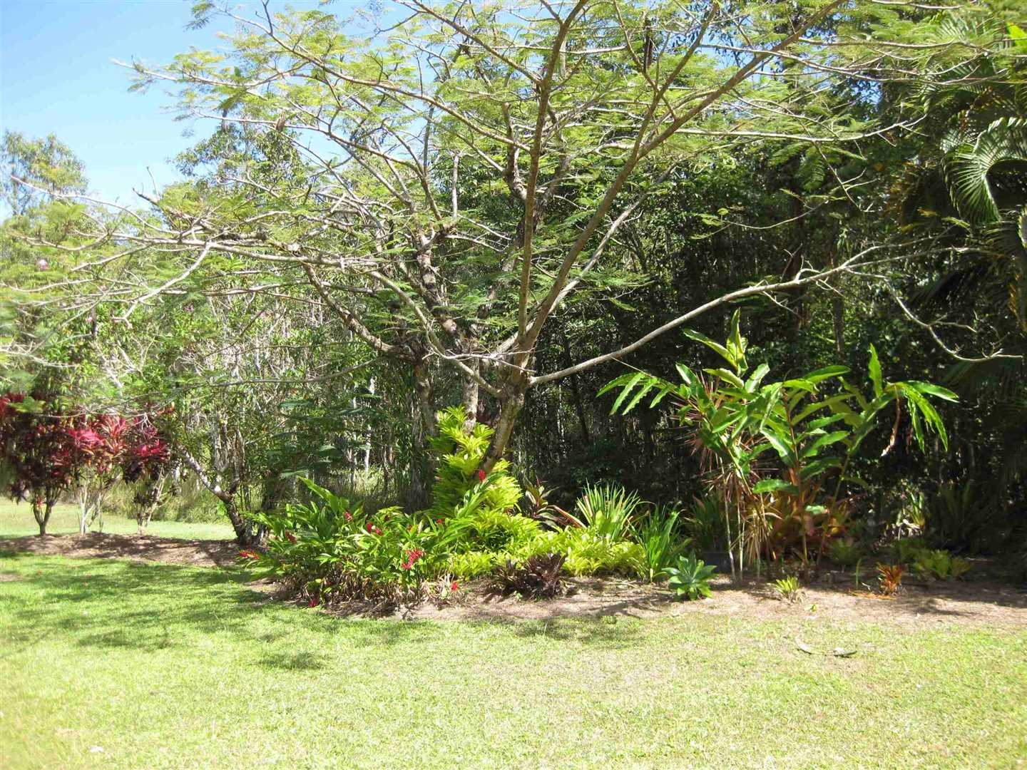 View of part of garden area, photo 6