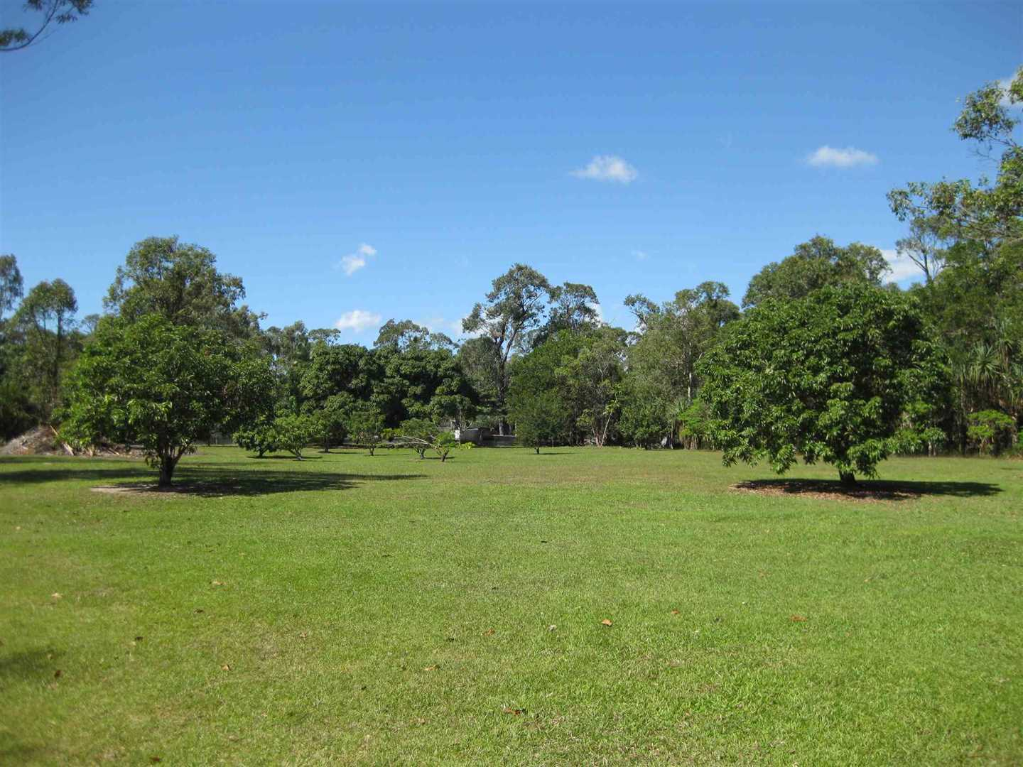 View of part of property showing part of cleared grassed area and some fruit trees, photo 1