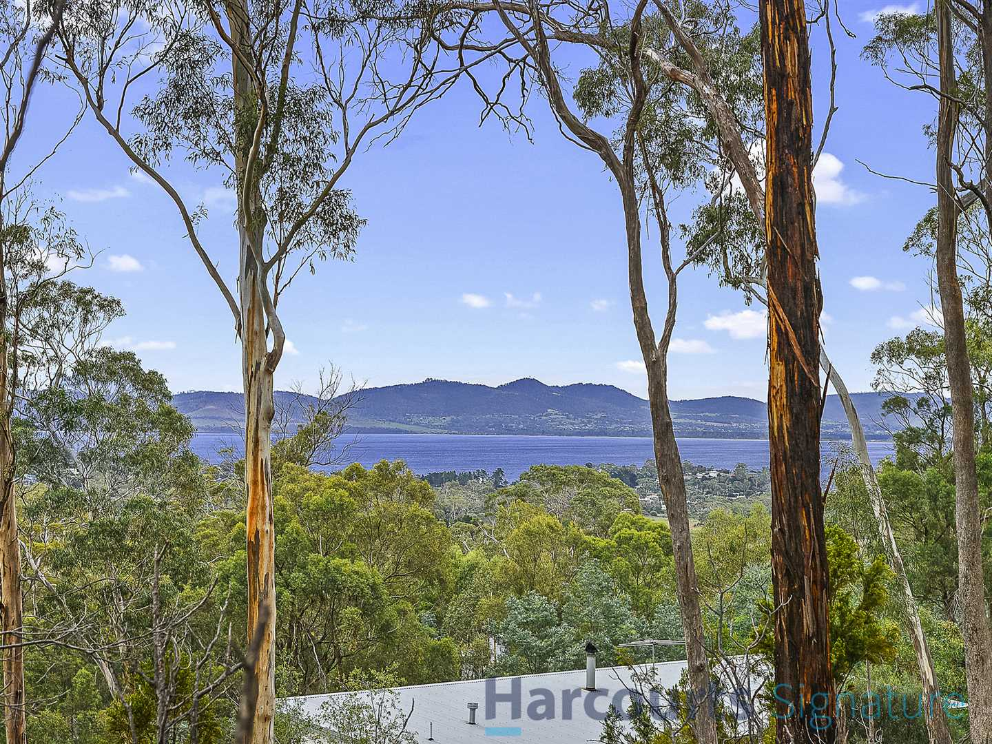 1 Hectare Allotment in Dodges Ferry - Be Quick!!