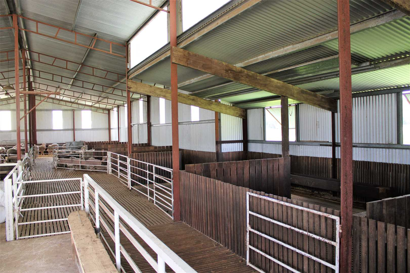 Show Shed Lot 4