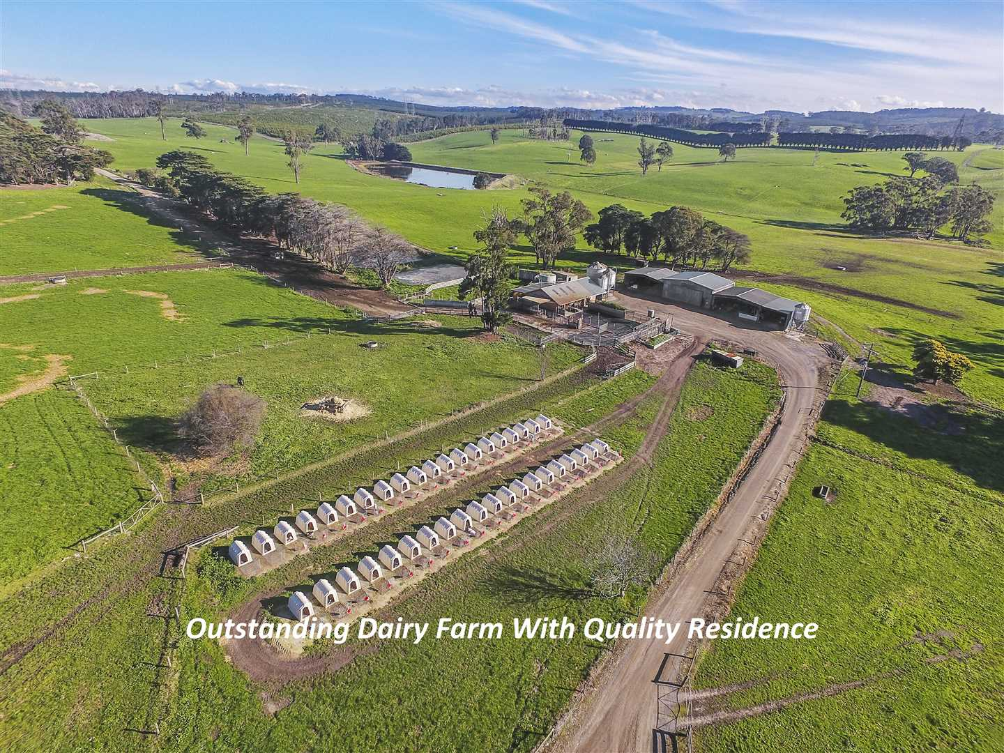 """""""Promised Land"""" -Outstanding 311 Acre Dairy Farm"""