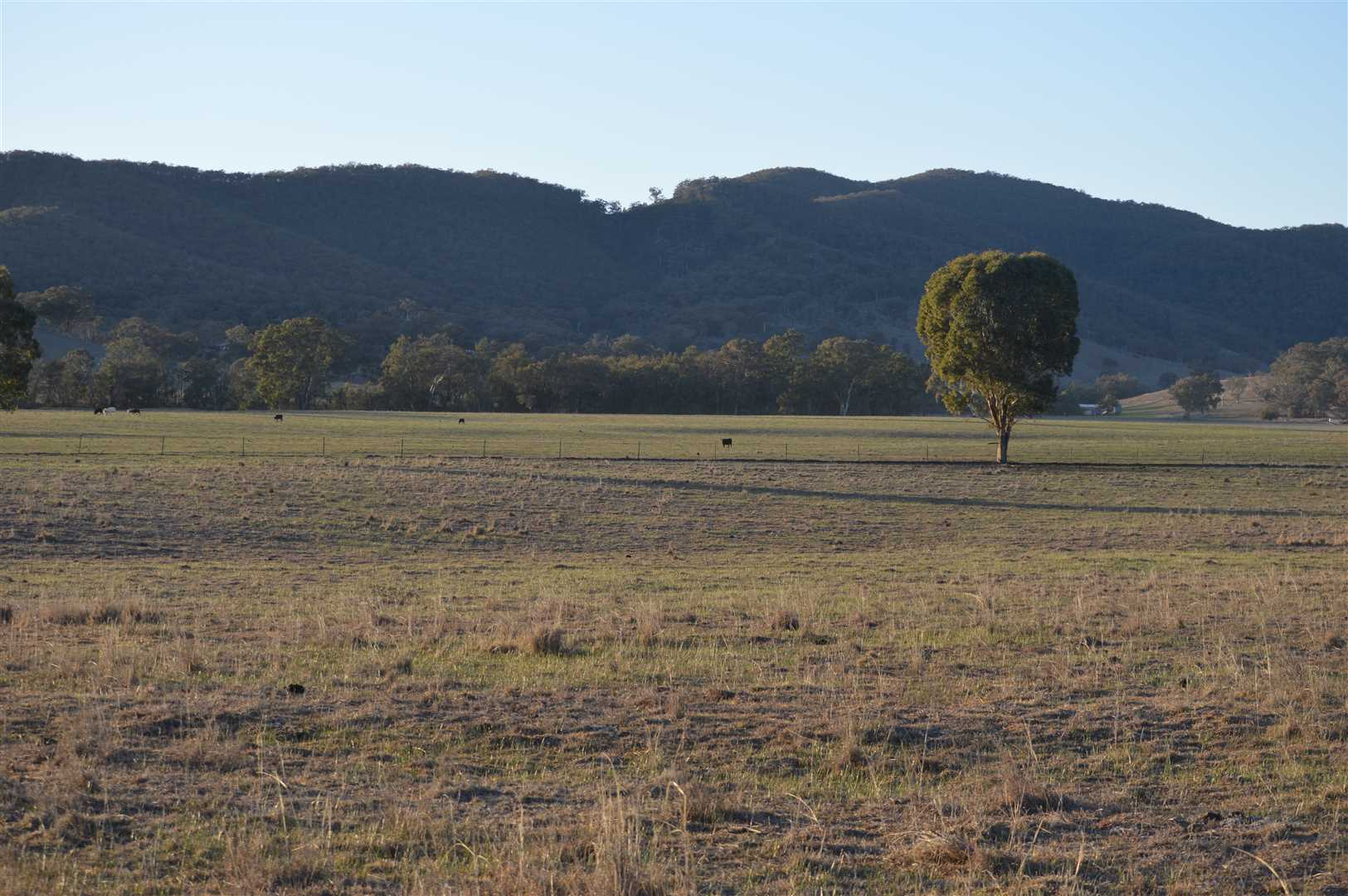 Magnificent rural views to the typical Mudgee hills.