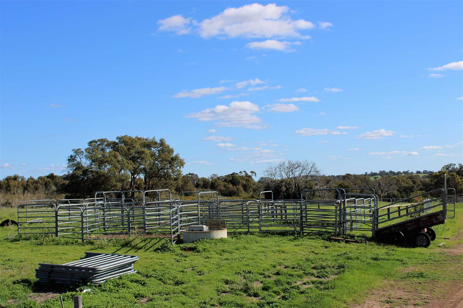 Cattle yards, under construction and in use