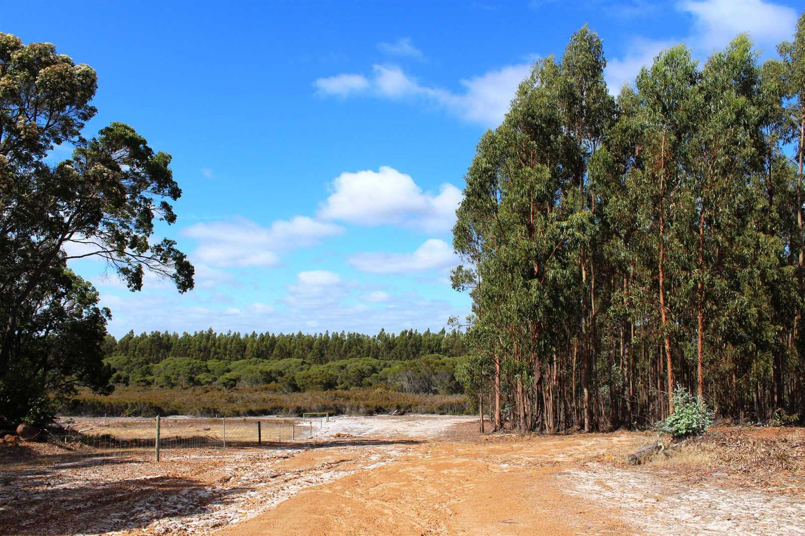 Farmland & Forestry Investment Opportunity