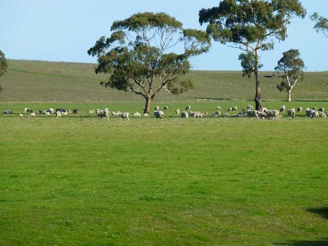 Price Reduced - Cropping and Grazing