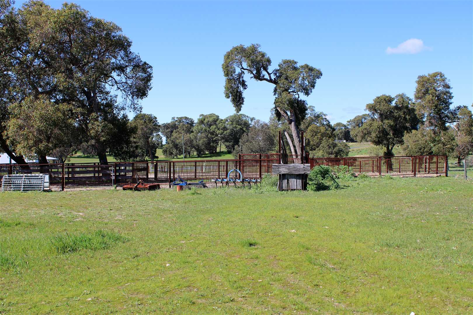 Cattle/Sheep yards