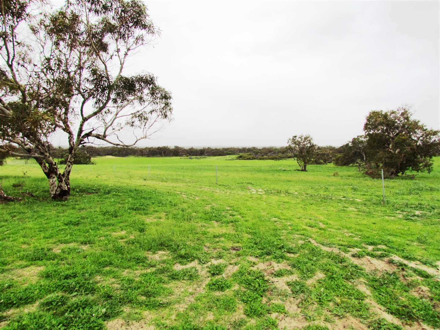 Arramall Farm (2245 Ha - 5548 Ac)