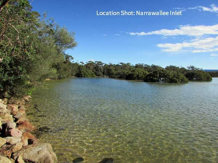 Location Shot - Narrawallee Inlet