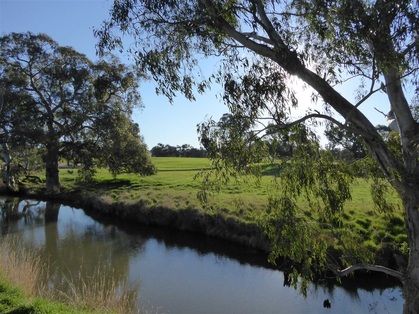 Historic Holbrook property with 140 Mgl Irrigation Licence.