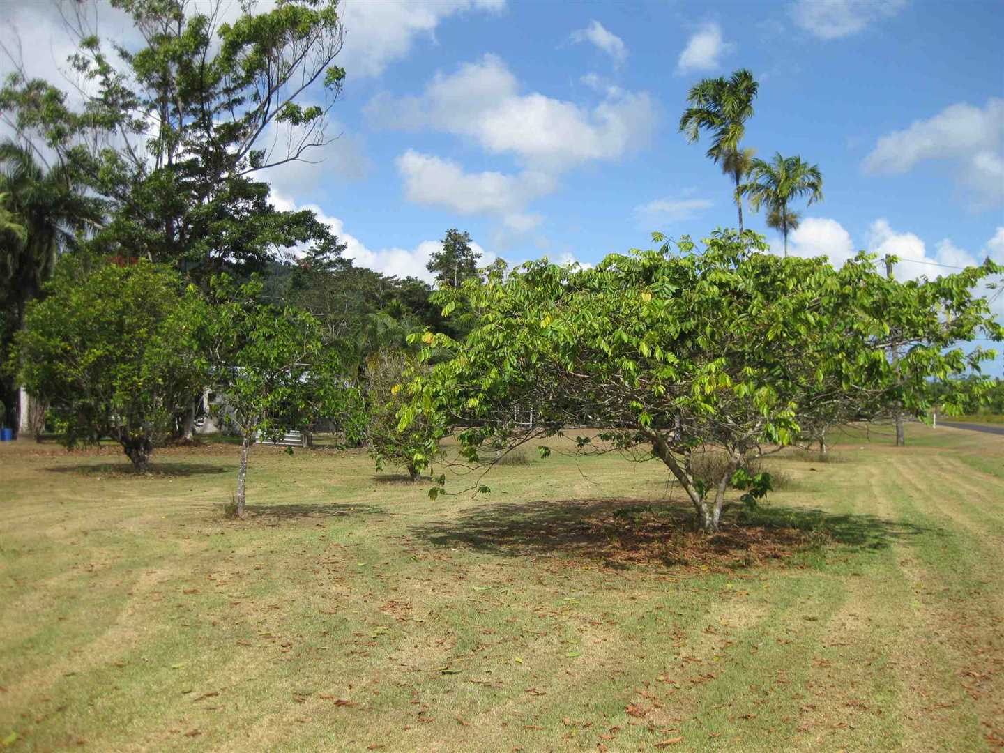 View of part of home Orchard area, photo 2