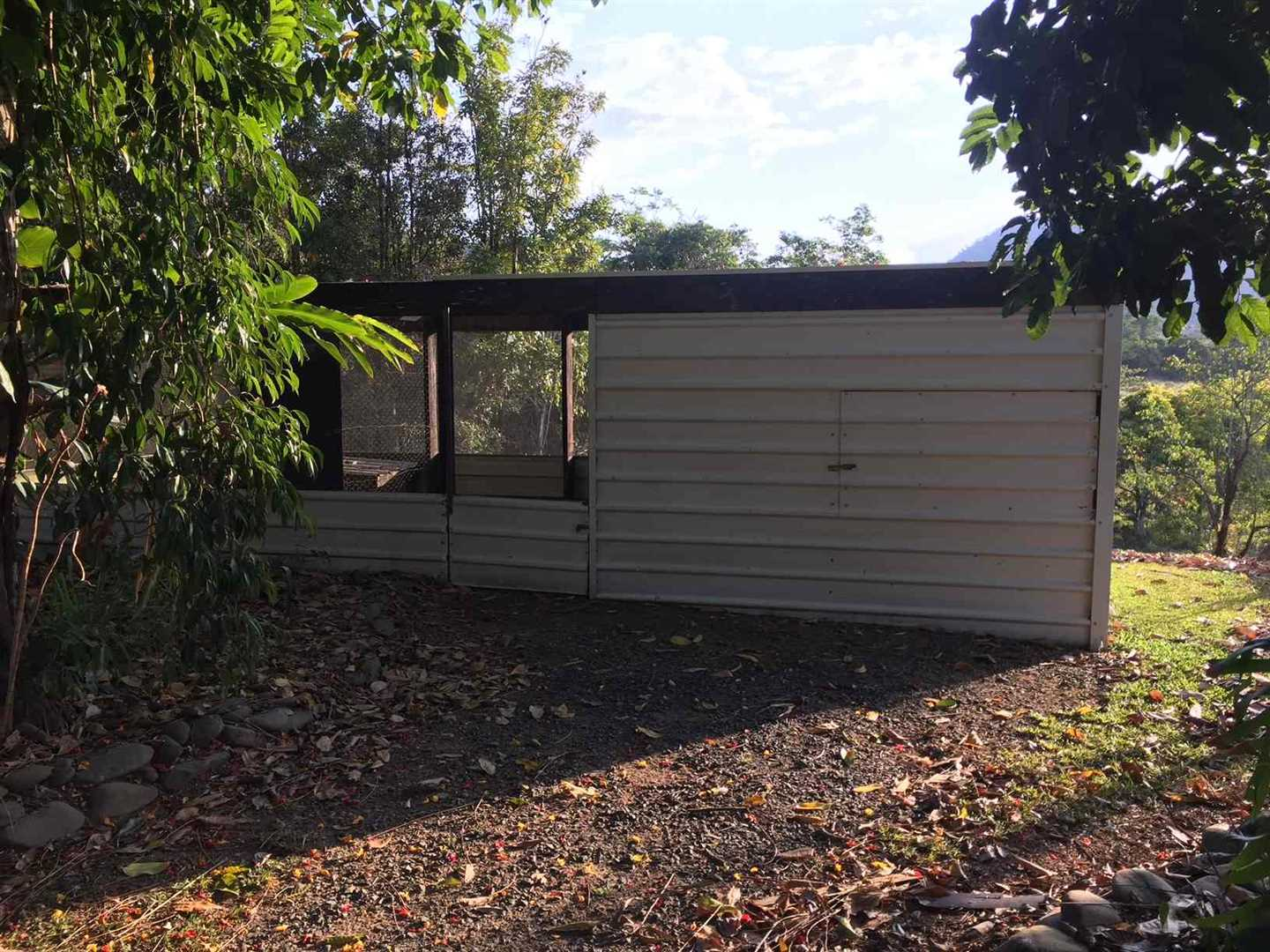 Outside view of part of bush chicken coop