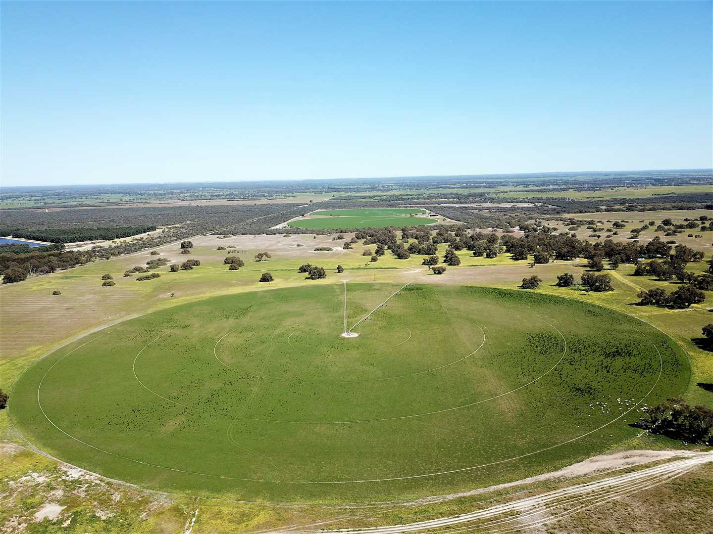 Boonanarring Ridge. Rare Find, Prime Opportunity