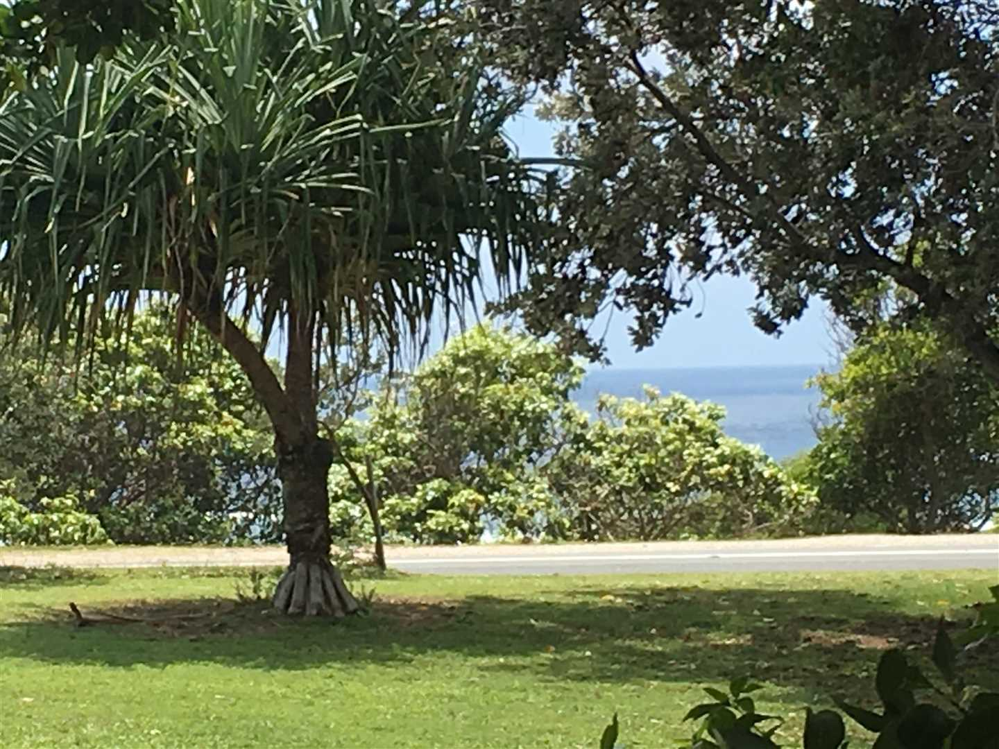 Central to the best of Point Lookout