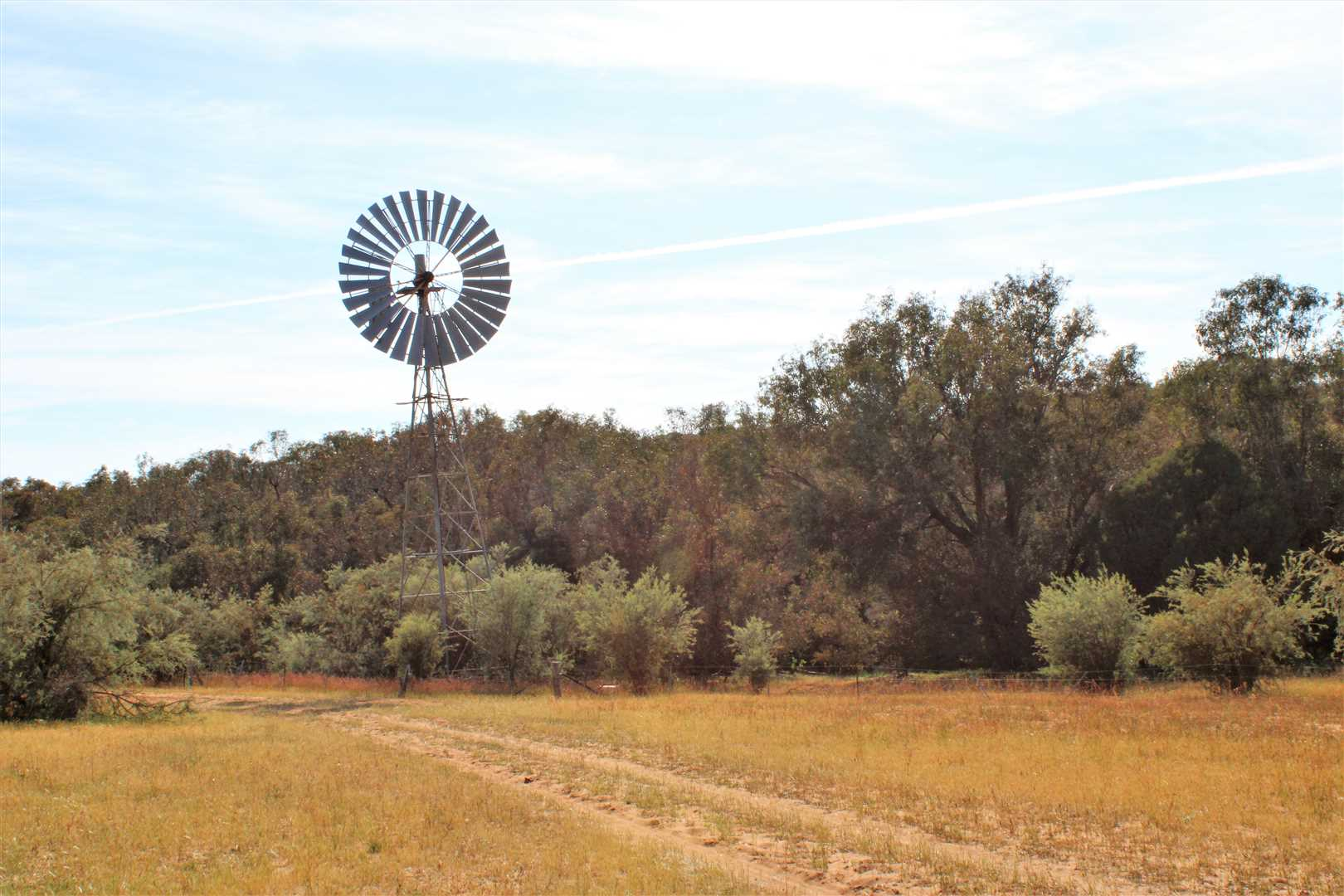 Windmill pumping from well on Gingin Brook