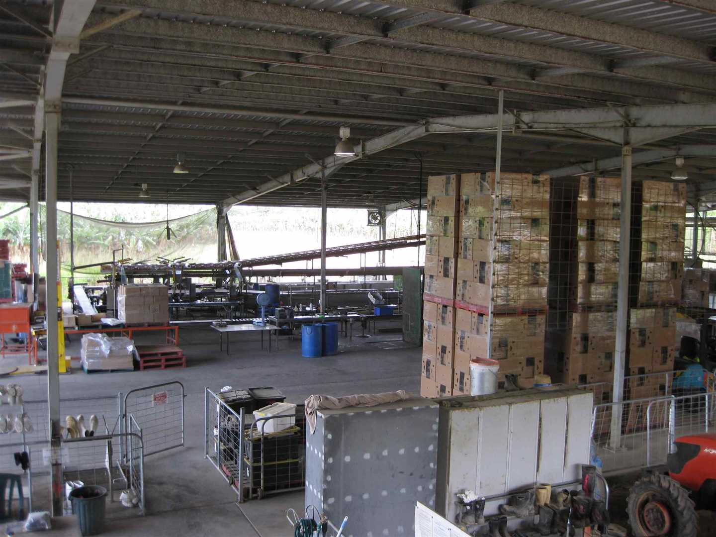 View of part of inside packing shed