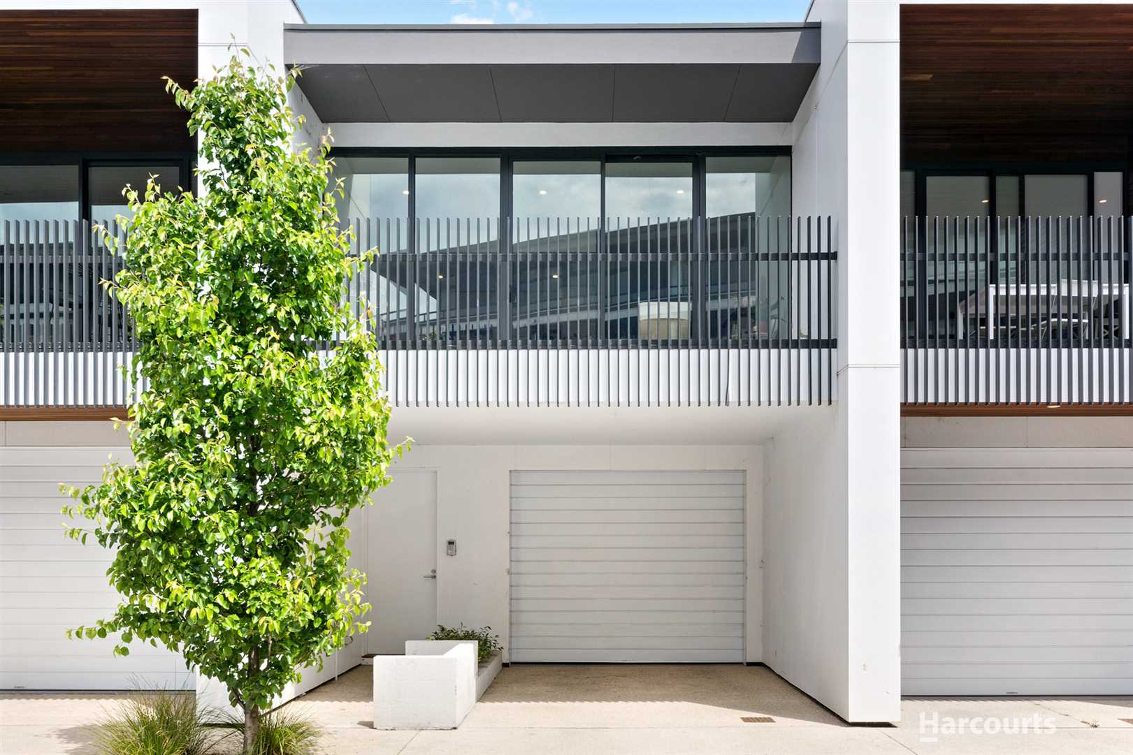 Monash Uni Locale. An Educated buy as an Investment or Home