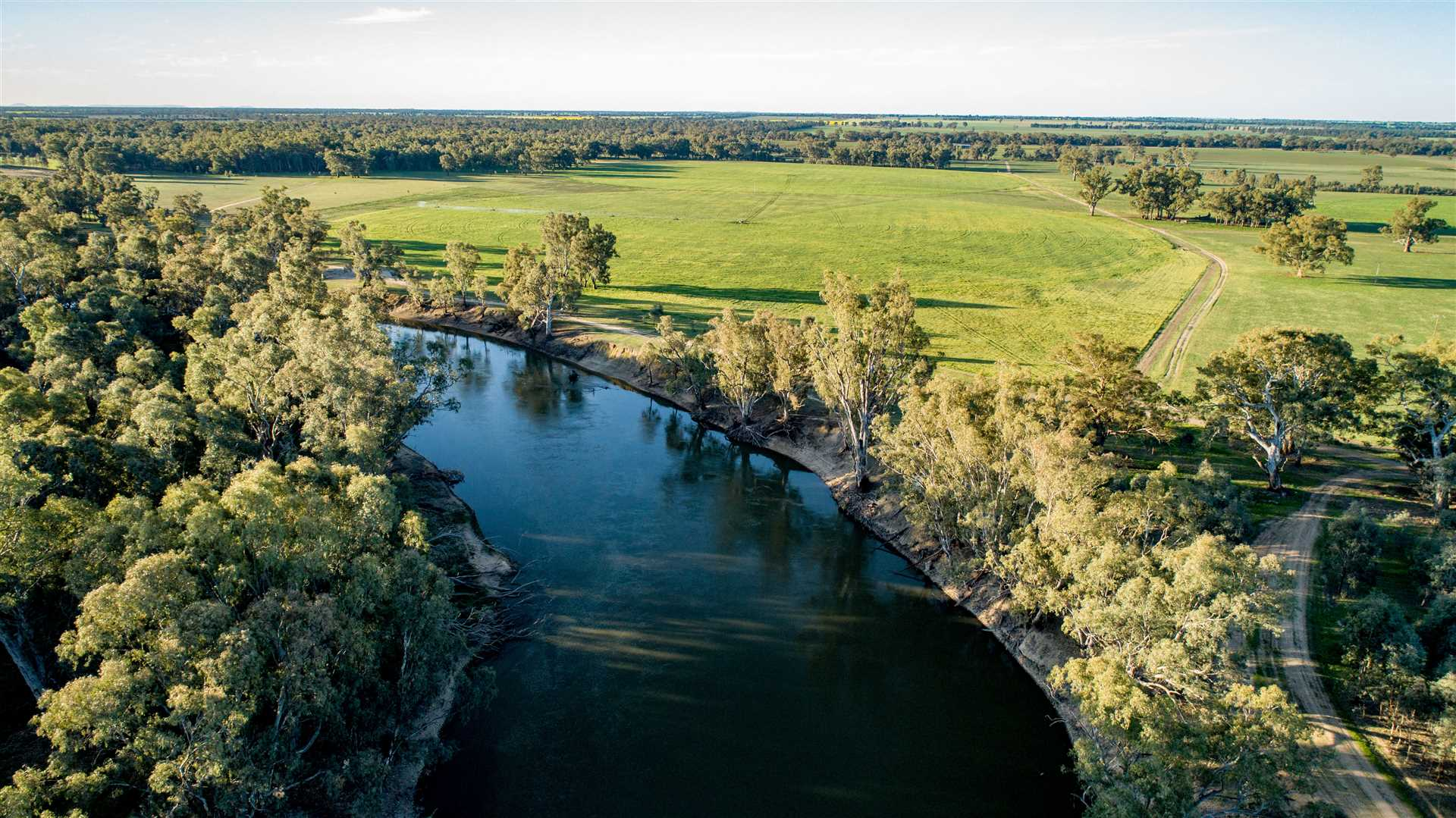 171ha with secure water west of Wagga