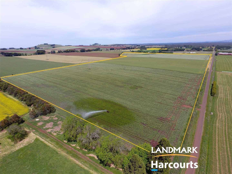 Outstanding 76 Acre Volcanic Soil Farming Allotment
