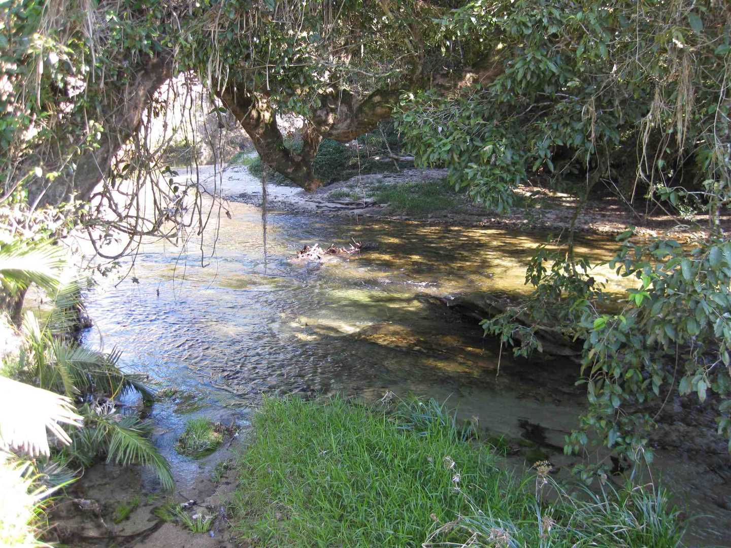 View of part of creek adjoining the property, photo 4