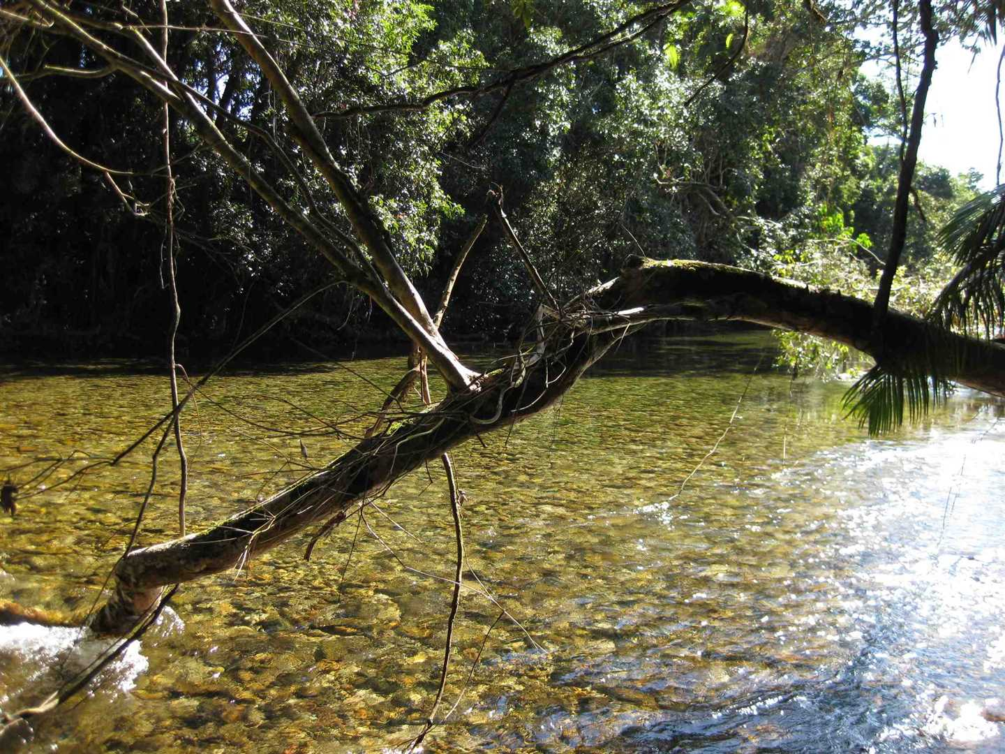 View of part of creek adjoining the property, photo 5