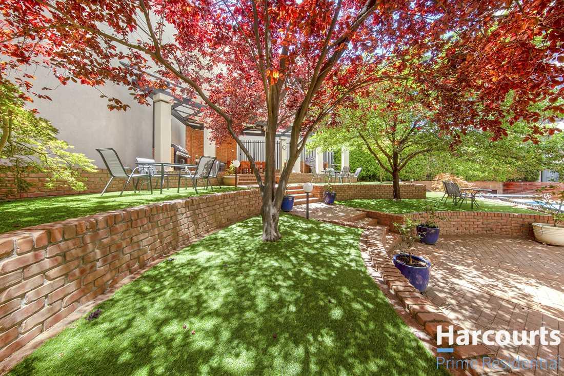 Complex Courtyard Gardens