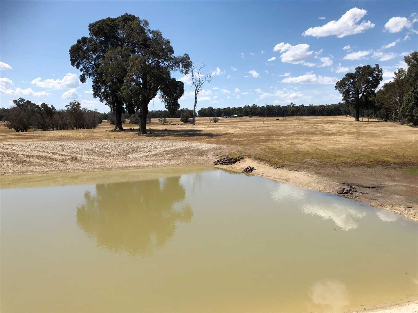 ' Swan Valley Farm '  ( 58.86ha / 145ac )