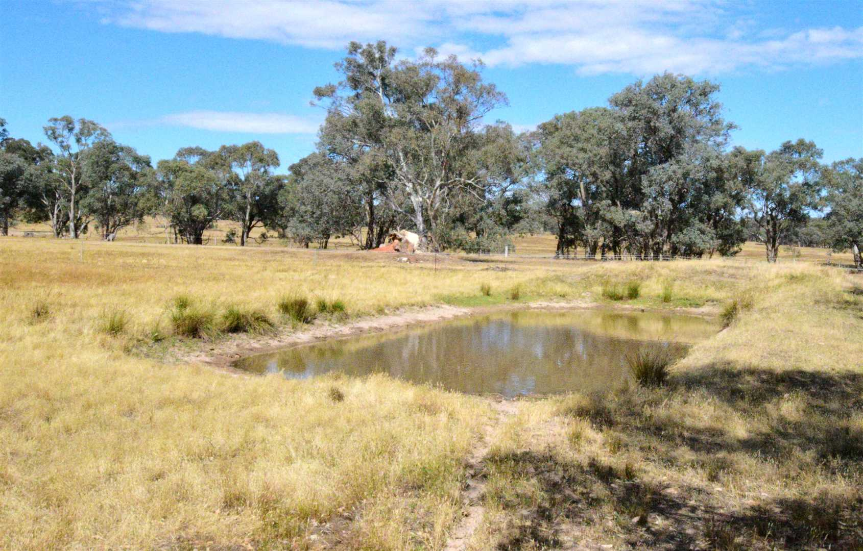 30 acre lifestyle property....  affordable...  a ripper!!!