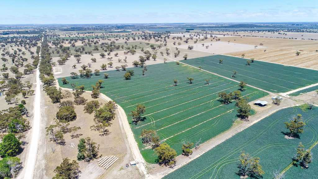 Andy Grays - Cropping l Grazing l Irrigation