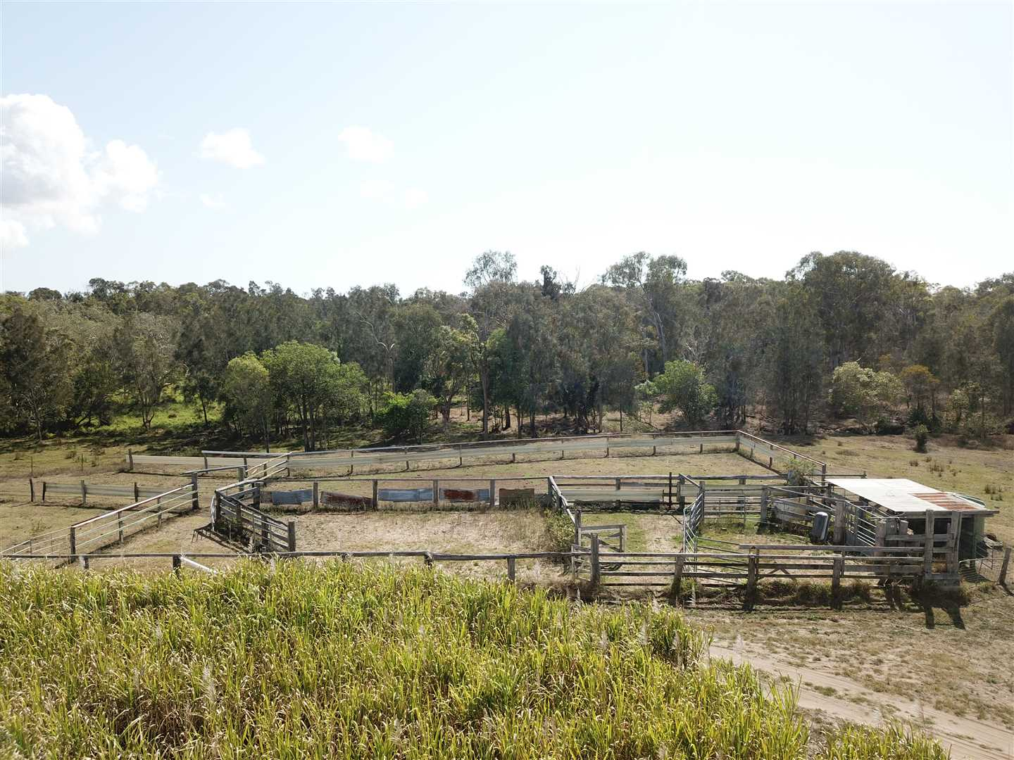 cattle yards with vet crush and rainwater tank