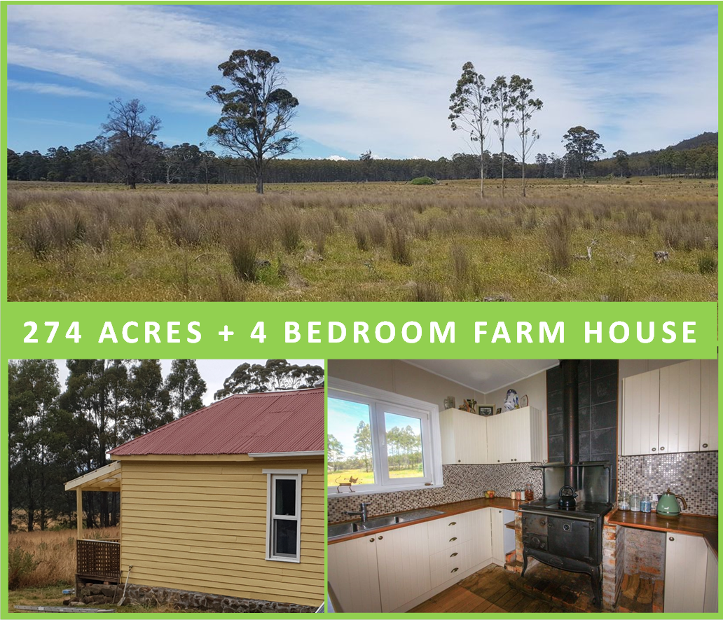 111 Hectares + Renovated Home + Vendor Finance