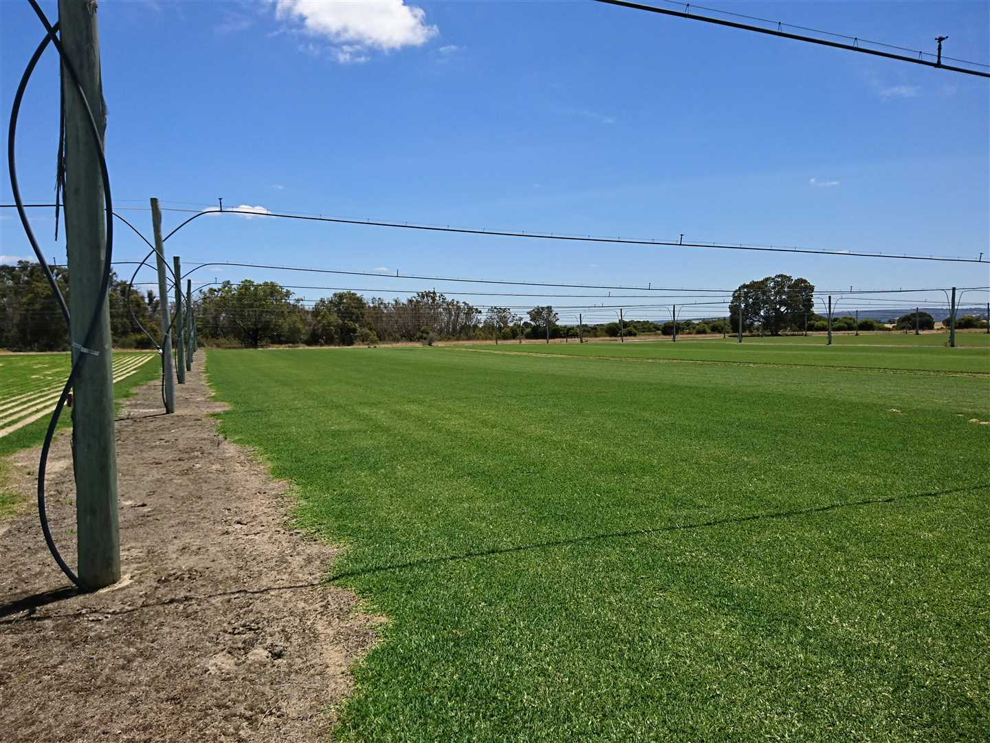 Horticulture / Investment Opportunity - Bullsbrook West