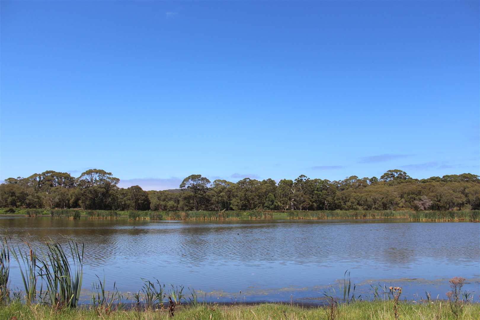 'Lake Saide'  (130ha/321 ac) or for sale as 4 separate lots