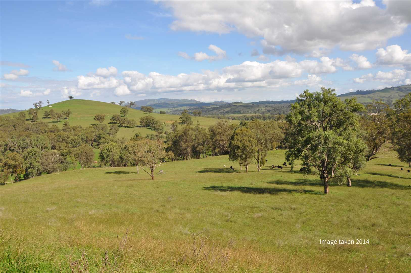 328 productive acres, close to Scone & ready to build on!