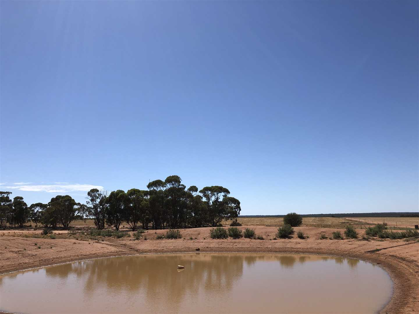 'Adams'      (2,580 ha / 6,375 ac)