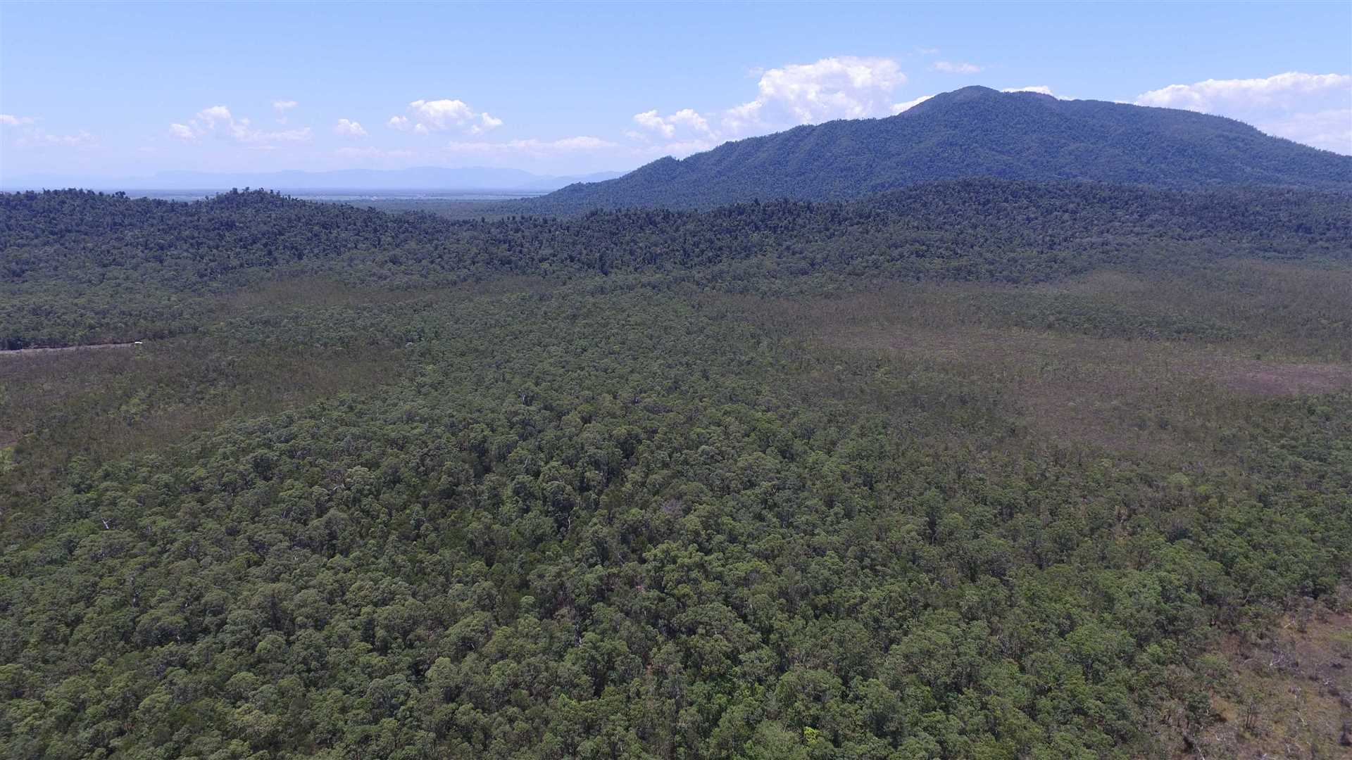 Aerial photo mainly above part of Lot 29 elevated homesite area looking approx. South to Mount Mackay