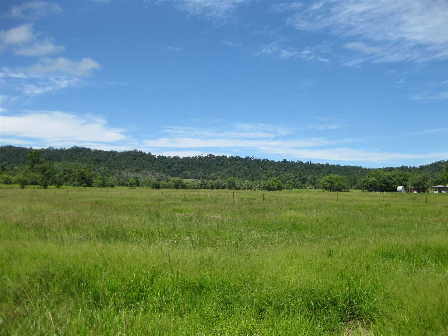 View of part of property showing part of the paddocks and pasture area, photo 1