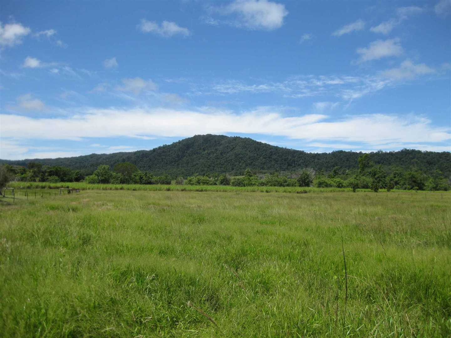 View of part of property showing part of the paddocks and pasture area, photo 2