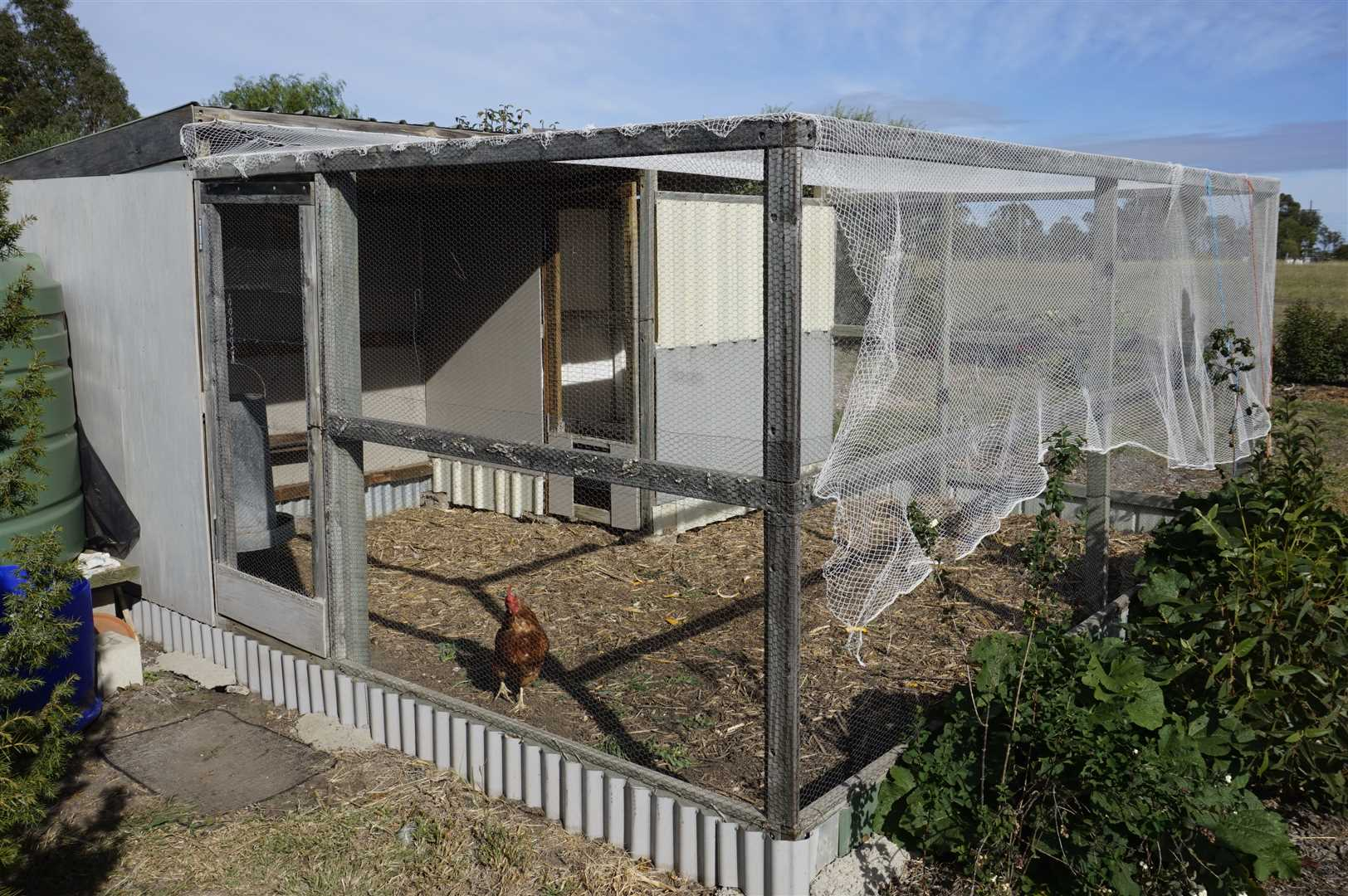 Country Chook Pen