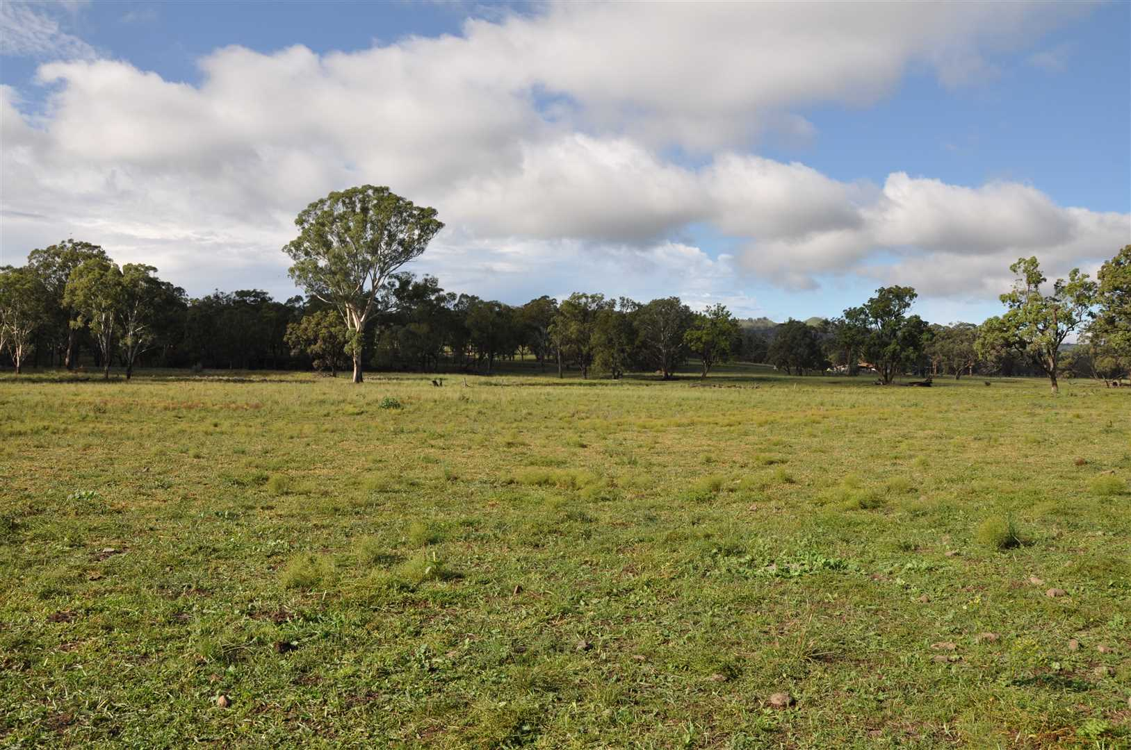 519 acres with excellent water, near Merriwa