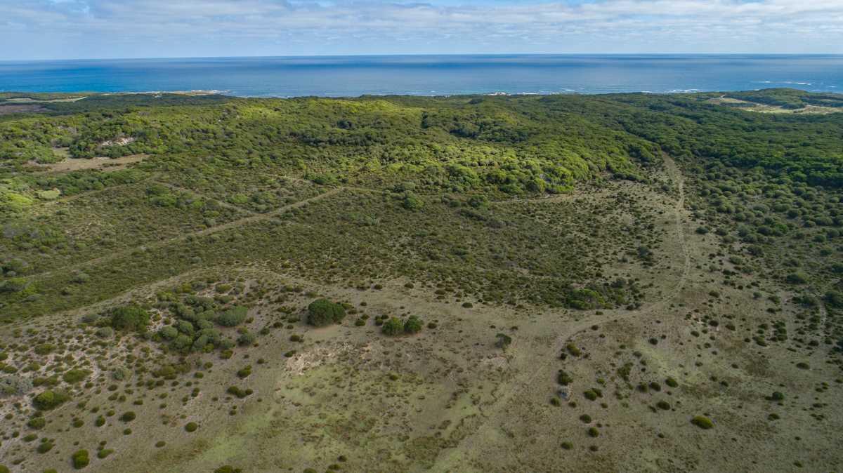 Reekara Coastal