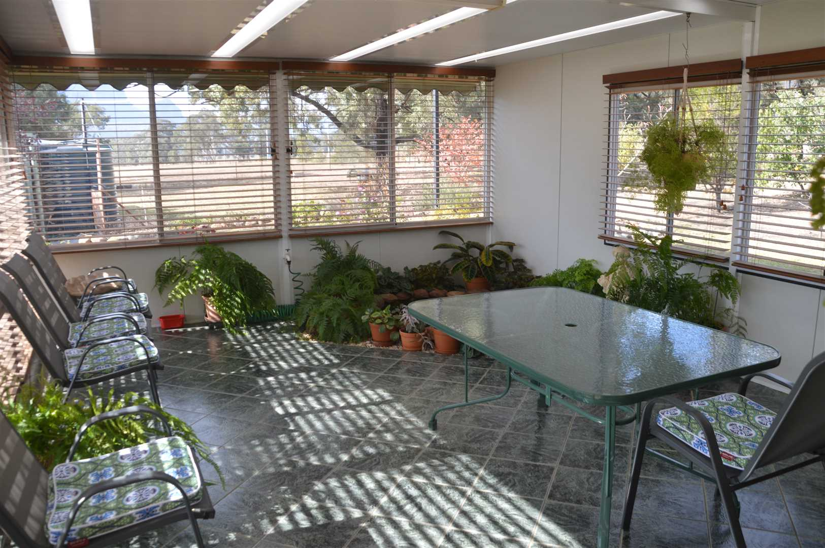 Sun Drenched Sun room