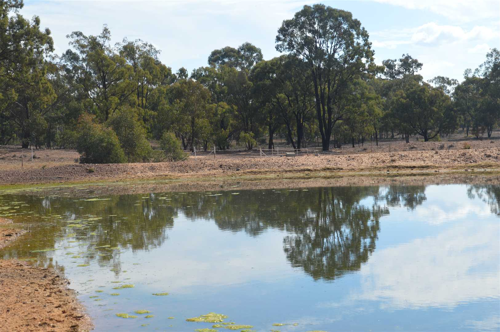 2 dams on the property supply water to gardens and stock